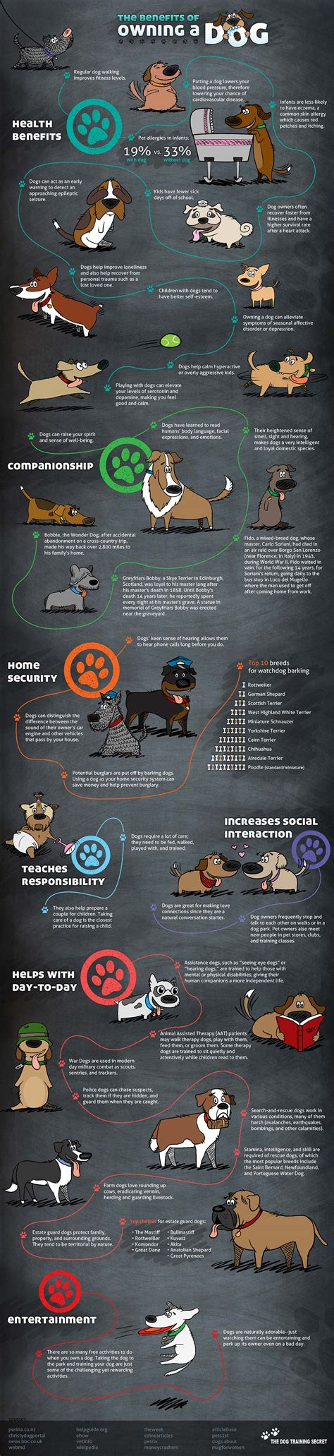 benefits of dogs benefits of owning a infographic