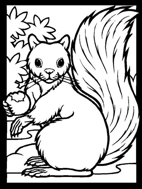 coloring page of a squirrel squirrel coloring
