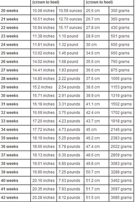 average weight for 6 the average weight for a 5 5 female