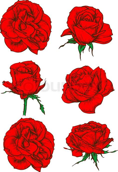 blooming rose tattoo designs icons with blooming flowers and buds of garden
