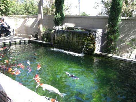 koi pond kits small koi pond kit triyaecom u003d backyard waterfalls and ponds kits various large
