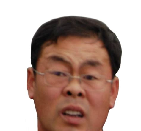 Asian Face Meme - i tried to take a picture of the great wall know your meme