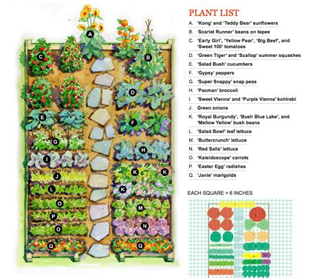 Garden Layouts For Vegetables Vegetable Garden Plan For The Home