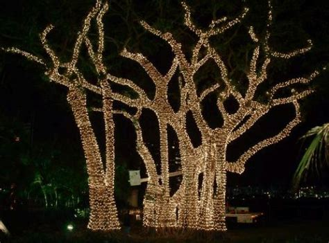solar powered christmas lights to 12 9 powered by mom