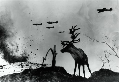imagenes que impactantes las impactantes im 225 genes de la segunda guerra mundial que