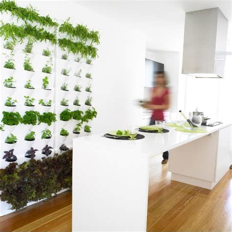 Indoor Wall Garden by Indoor Outdoor Living Wall Planters