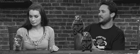 felicia day and sundry gif find on giphy