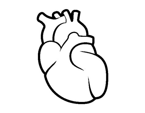 human heart art coloring pages