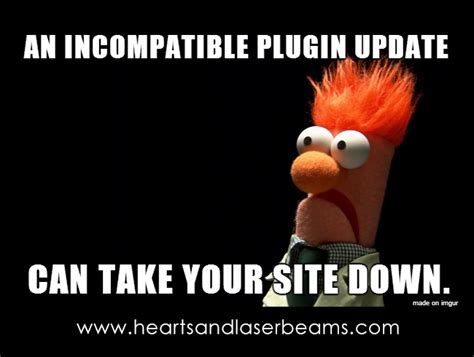 Muppets Memes - funny memes to celebrate our new site maintenance services