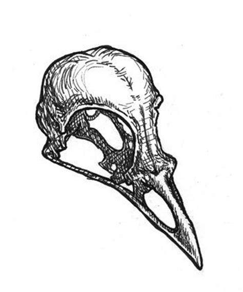 bird skull drawing embroidery felt applique