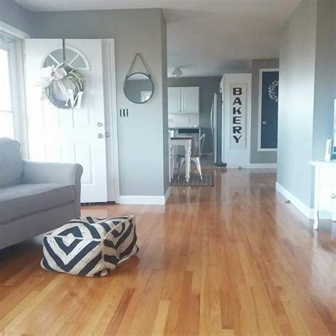 behr paint color intellectual 1000 ideas about intellectual gray on sherwin