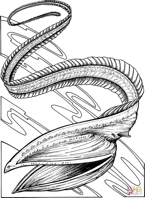 gulper eel coloring page free printable coloring pages