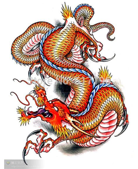 dragon tattoo book 4 free pictures of dragon tattoos clipart best