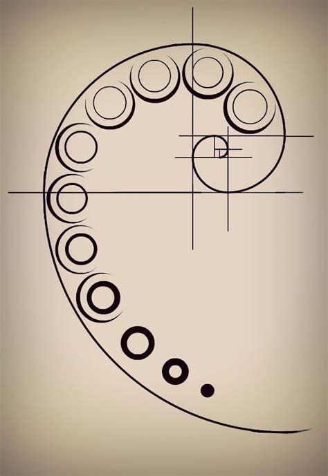 golden spiral tattoo best 25 fibonacci ideas on