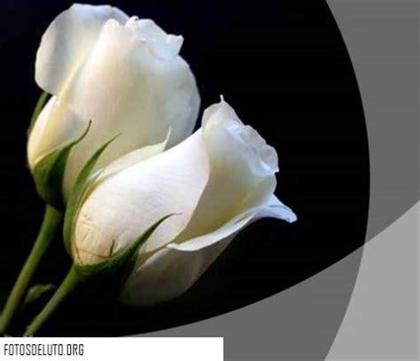 imagenes de luto blancas nuevos mo 241 os de luto bonitos para perfil de facebook