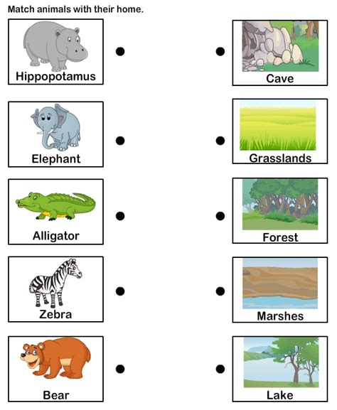 printable animal homes students could match the animal to its habitat