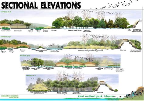 wetland section wetland research sections hydrology pinterest