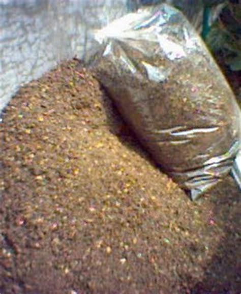 cara membuat zpt organik untuk padi cara mudah membuat pupuk kompos kebun organik