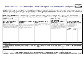 work experience risk assessment template a risky business 195 162 194 194 finametrica assess the facts