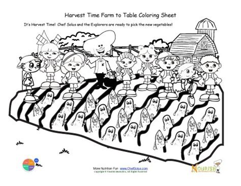 printable   harvest time coloring sheet