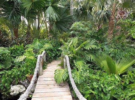 how to create a tropical backyard 50 dreamy and delightful garden bridge ideas