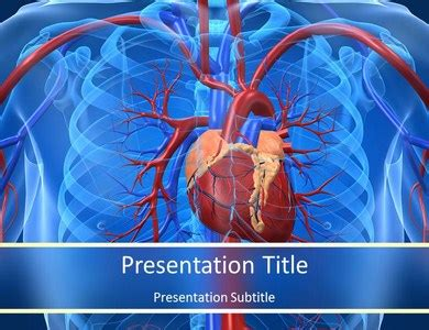 free cardiac powerpoint templates cardiovascular system facts powerpoint template