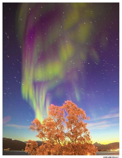 northern lights tromso september 58 best sledding images on