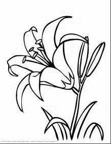 small flower coloring pages flower bouquet coloring pages printable paper flower templates