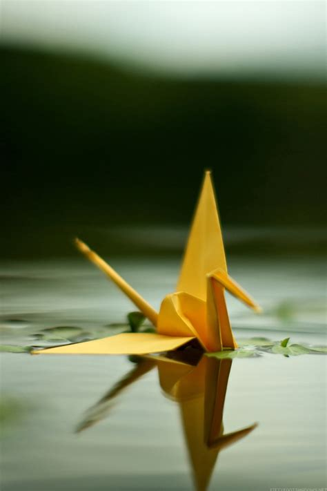 origami crane   water iphone     iphone