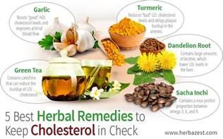5 best herbal remedies to keep cholesterol in check