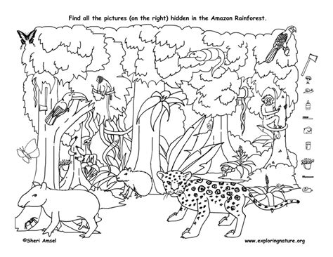 forest animals coloring pages for adults view