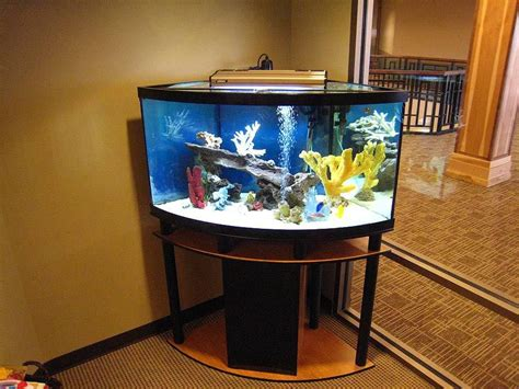 Stand Galon Aqua 30 gallon aquarium stand aquarium ideas aquarium
