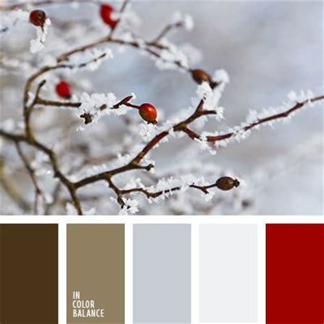colors that match brown 25 best ideas about winter color palettes on