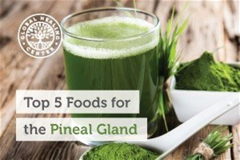 Chlorella Fluoride Detox by Top 5 Foods For The Pineal Gland