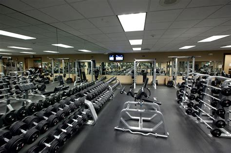 exercise equipment in bedroom curious incidents at the gym hours of cardio vs minutes of weights