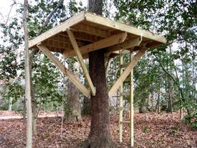 treehouse design software how to build a tree house 5 tips for building kids treehouse