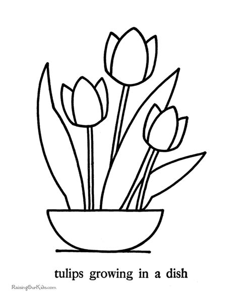 coloring pictures of tulip flowers tulip outline coloring coloring coloring pages