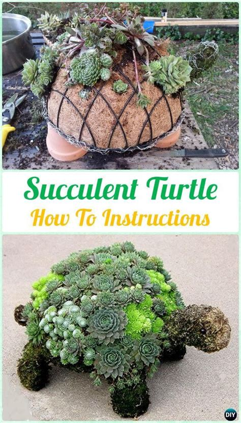 diy succulent projects diy succulent turtle topiary diy indoor succulent garden ideas projects garden