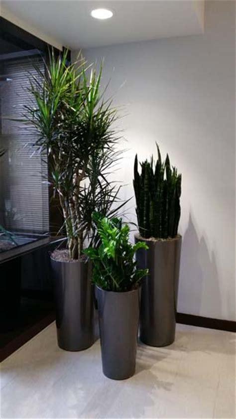 call center interior plants santa ana ca plantopia