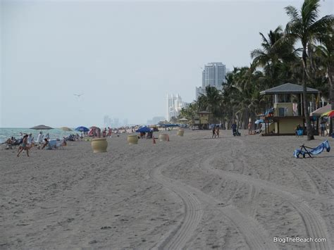 hollywood beach weather question which florida beaches have the most beautiful