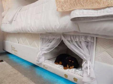 nel letto dormire con il ecco un letto con cuccia tutto ze
