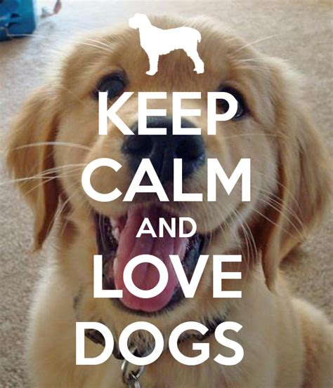 calm dogs gallery for gt keep calm and dogs