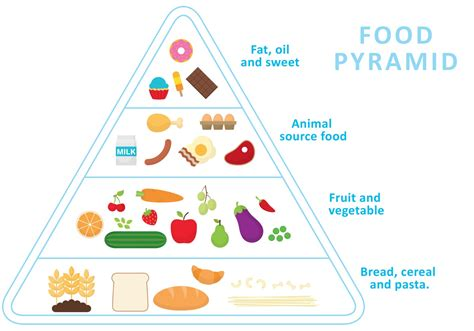 food pyramid food pyramid vector download free vector art stock