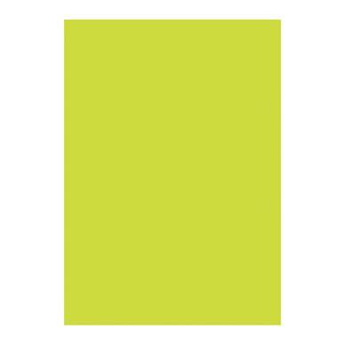 Pantone Vert Anis by Papier D 233 Copatch 30 X 40cm 295 Vert Anis D 233 Copatch Chez