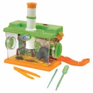 avis la des insectes eveil et jouets