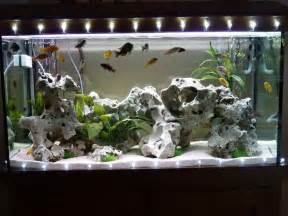 Home Aquarium Decorations Good Aquarium Decorations Http Monpts Com Some