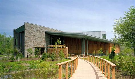 cornell university laboratory of ornithology