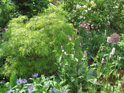 Garten Und Landschaftsbau Coburg by Coburg Pflanzungen B 228 Ume Str 228 Ucher Stauden Uwe Knauer Gartenbau Landschaftsbau Coburg