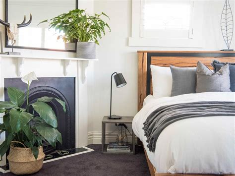 plants for the bedroom leaf love the best plants to grow in your bedroom