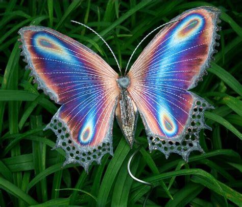 imagenes hermosas mariposas fotos de mariposas hermosas imagenes de mariposas 11